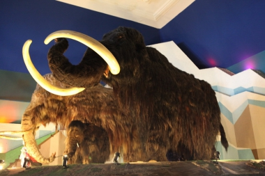 10 марта 2012 г. - Музей ледникового периода